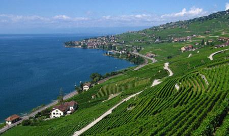 纯瑞士8天亲子体验之旅(S)
