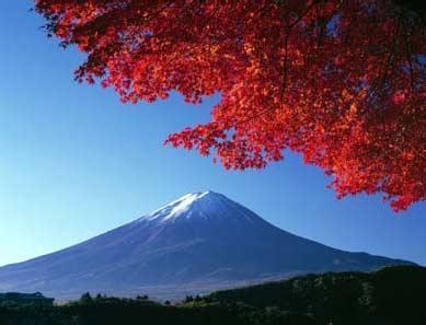 日本本州金牌の声名汤美食之旅