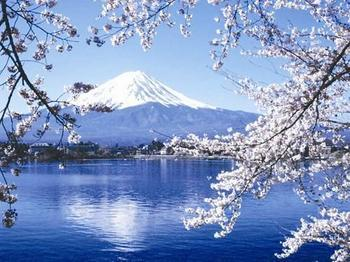 邂逅东京.富士山美景温泉四天之旅