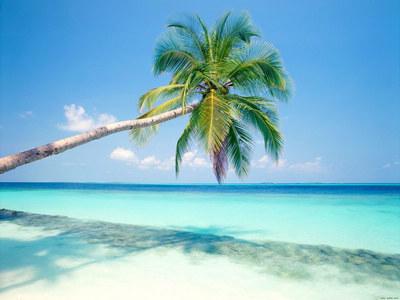 海口岛外岛深度四天双飞游