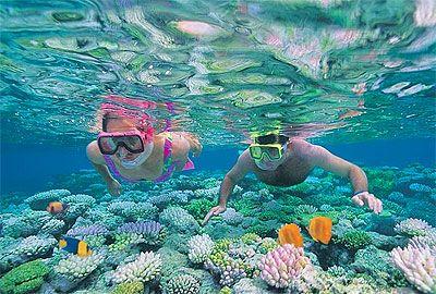 D:澳洲新西兰大堡礁12天主题乐园农庄亲子游(深圳往返)