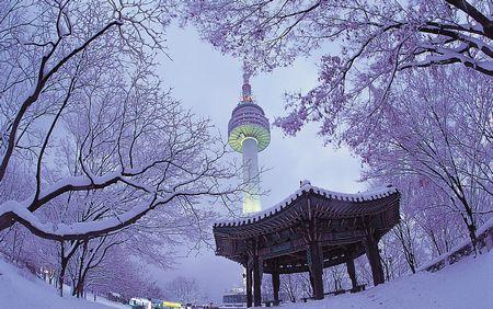 1月、春节:冬之恋-雪舞韩国首尔济州精彩五日游(OZ——深圳往返)