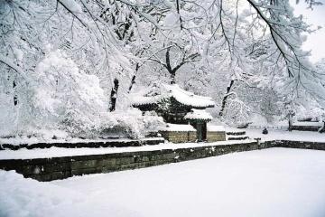 1月、春节:雪之浪漫——韩国首尔畅游五天