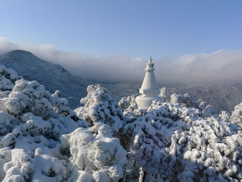 A1线:(纯玩)冰雪庐山、九江双卧四天特惠游