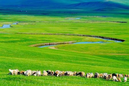 B3线:草原之恋--内蒙希拉穆仁草原、银肯响沙 湾、成陵、蒙牛双飞五天游