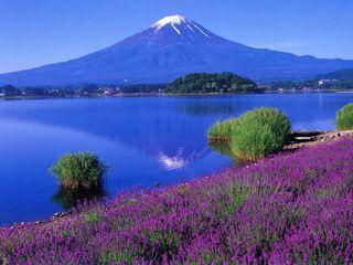 初夏风情--日本本州美食享乐六日游