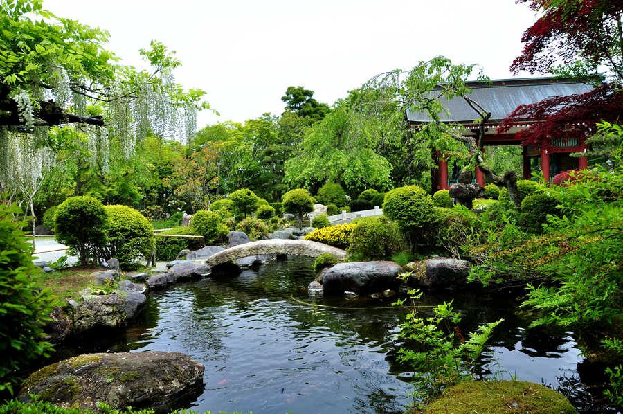 夏日之声-日本本州温泉美食享乐六日游