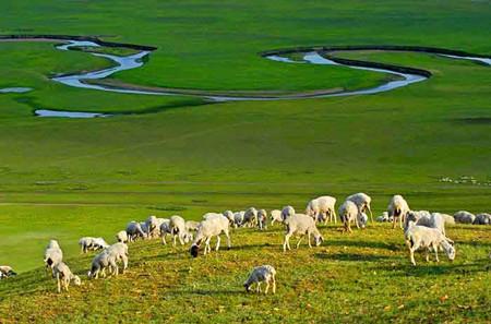 YB:内蒙古希拉穆仁大草原、银肯响沙湾、康巴什、成陵五天双飞游