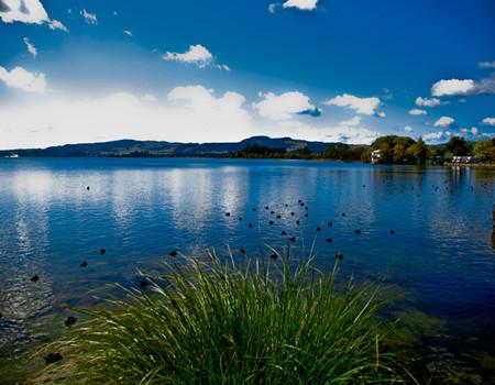 1月----D:新西兰南北岛8天纯净游