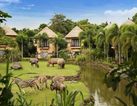 春节:蓝点风情PULS--巴厘岛动物园奇妙之旅五天四晚