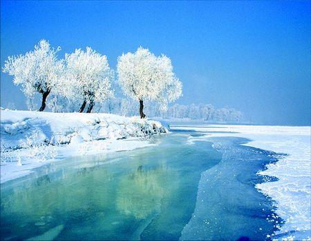 春节YB线:(四+五星)冰城哈尔滨、亚布力激情滑雪、中国雪乡双飞五日