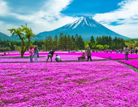日本本州深度自主6天游