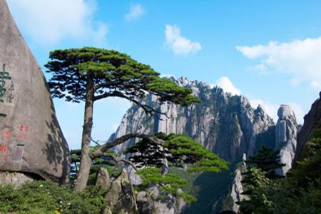 A1线:(纯玩)梦幻黄山、西递古村、屏山景区双飞四天团
