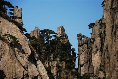 F1线:(纯玩)多彩黄山、西递古村、屏山景区双卧五天团