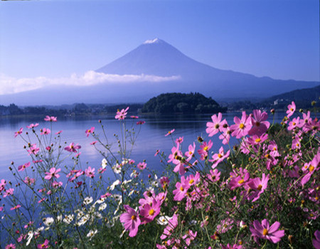 日本·东京、富士山半自助6天【精彩4+2随心游】