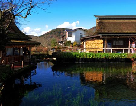 Z;【和风夏日】日本本州温泉酒店、东京都厅、富士山五合目、伏见稻荷大社、心斋桥六天之旅