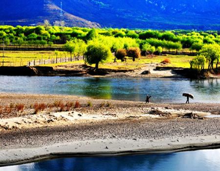 Y: 深圳、拉萨、纳木措、林芝、巴松措、大峡谷双飞六天游