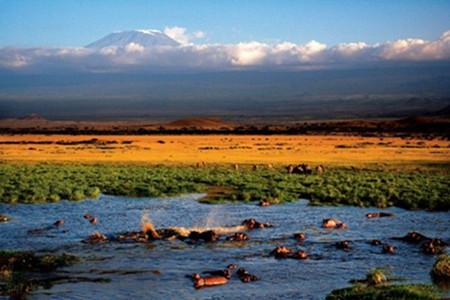 肯尼亚动物追逐10天之旅