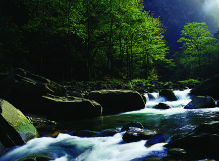 C2;韶山、张家界森林公园、天门山、黄龙洞、凤凰古城、矮寨大桥高铁五日品质游