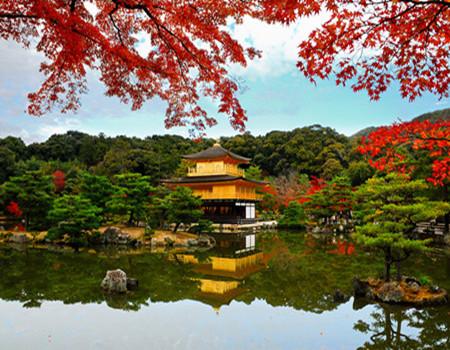 S;秋の悦享--东京北海道温泉美食六日游