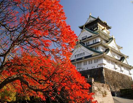 S:日本本州动感三大乐园大阪环球影城、手握寿司DIY、亲子合家欢六天之旅(香港往返)