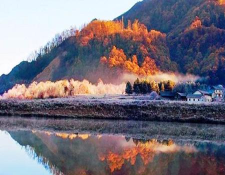 X;【 惠游】 探秘湖北神农架红叶季、 醉美深秋大九湖四天双飞游