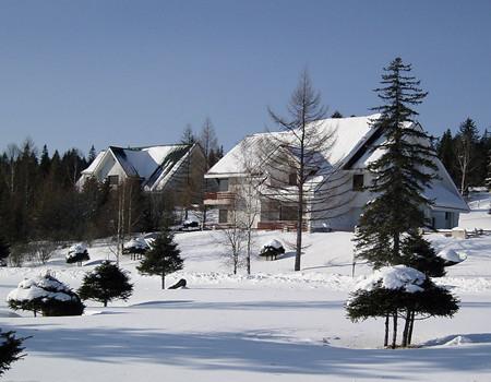 X-A3线:中国雪乡.国际滑雪中心亚布力.牡丹江.镜泊湖.冰雪画廊.东方小巴黎哈尔滨双飞六日游(0购物)