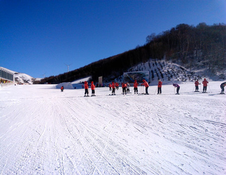 W-A3;冰城哈尔滨/激情亚布力滑雪/中国童话雪乡双飞5日游(全程0购物!0自费!)