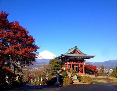 D;东京富士山轻井泽6天·斑尾高原夏令营体验三温泉欢乐之旅