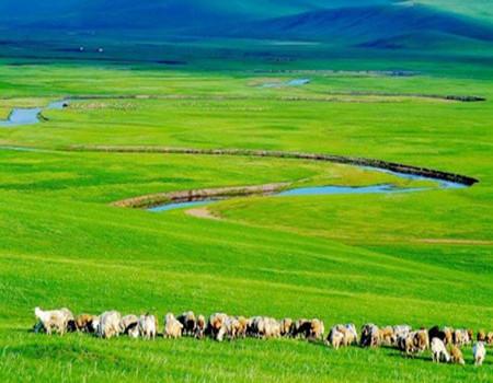 J;【爸妈去哪儿】内蒙古大漠豪情.生态草原.塞上西湖.伊利冰工厂双飞5日亲子游