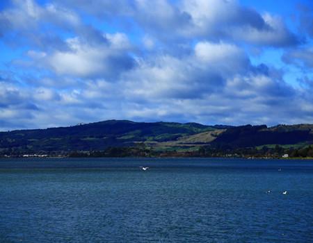 D;新西兰纯南岛10天(观蓝眼企鹅归巢、游浪漫的拉纳克城堡)