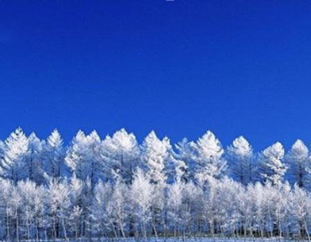 X;越野车穿越呼伦贝尔雪原.东山滑雪场莫日格勒河.根河湿地.中国冷极村.游牧部落双飞五日游