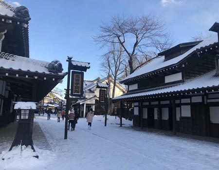 D-北海道白色之恋五天豪华团