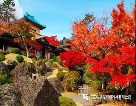 Y;日本三大国宝级体验.富士山GRINPA雪乐园.双古都日本文化之旅超值六天游(深圳往返)