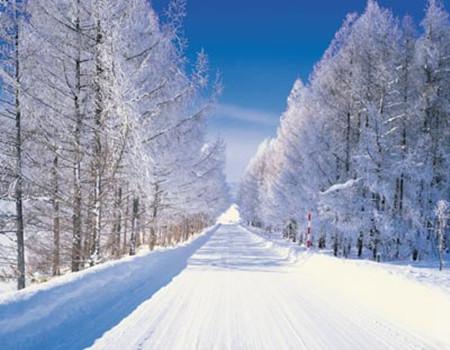 Y;北海道冰雪嘉年华-世界最顶级的四大冰雪节之一.札幌雪乐园.哆啦A梦空中乐园.美食双温泉五天豪华游(香港往返)